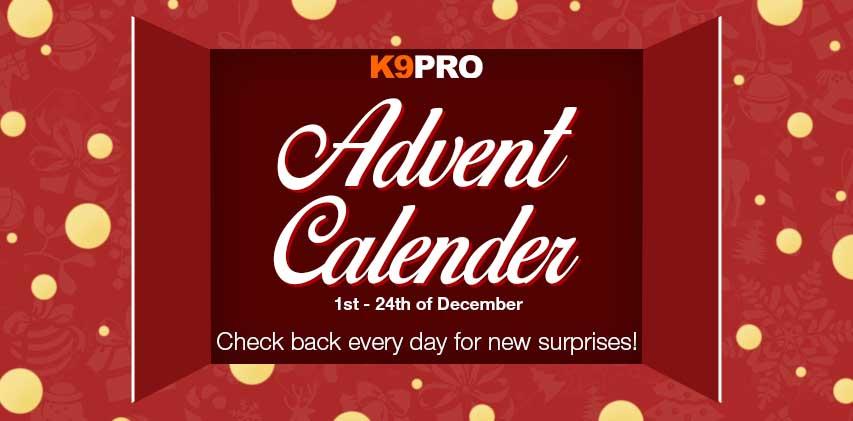 adventcalender-banner-website.jpg